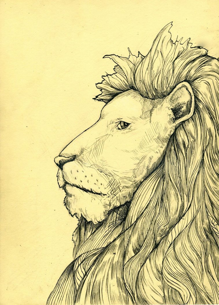 Lion  Check it out at:  http://beaulivres.tumblr.com/