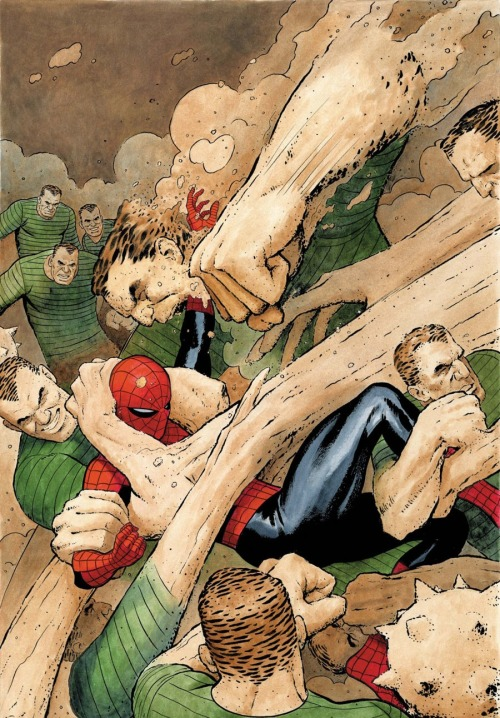 comicblah:  Spidey vs. Sandman by Paolo Rivera (from Amazing Spider-Man #616)