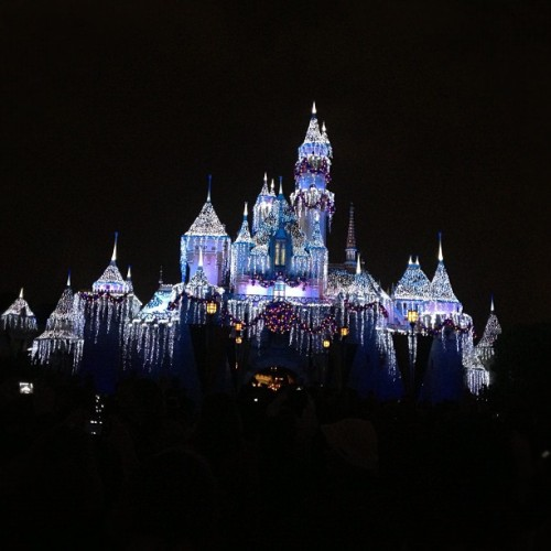 💙💙💙💙 (at Sleeping Beauty Castle)