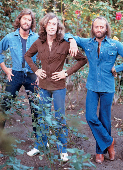 superseventies:  The Bee Gees