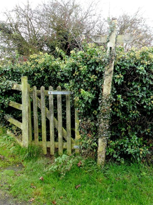 Ivy overgrown gate and Bridleway sign, Brewood, Staffordshire, England