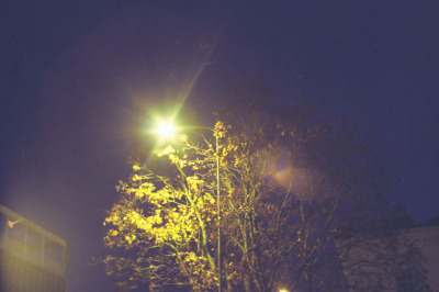 Street Light (by isimba)