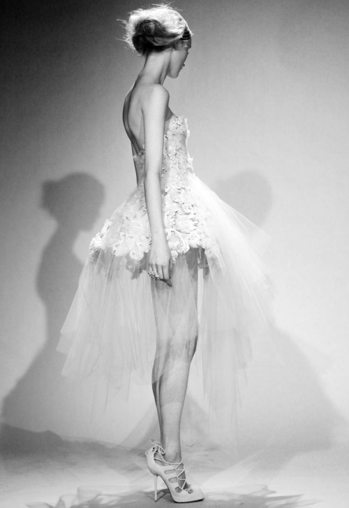voguelovesme:  MARCHESA