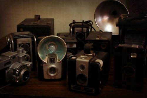 twiggy-loves:  my camera collection. i have 11 incuding my canon