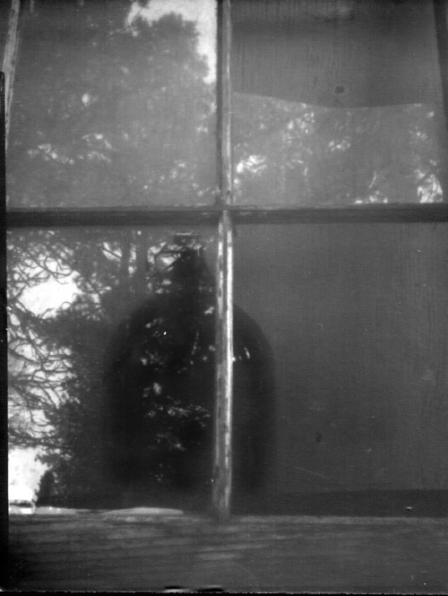 4x5 pinhole image, 6 inch focal length, paper developed in Dektol