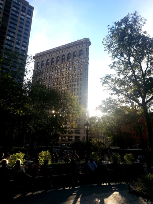 newyorkeveryday:  Madison Square Park. New York