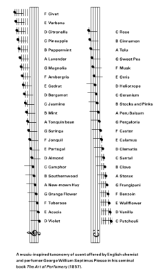 "aaknopf:  ilovecharts:  From Cabinet Magazine: a music inspired taxonomy of scents by George Williams Septimus Piesse, 1857.  ""There may be enhancements or distortions or hallucinations of taste, and smell, touch and hearing, or there may be fusions of the senses - a sort of temporary synesthesia - 'the smell of a low B flat, the sound of green,' as Breslaw put it. Such coalescences or associations (and their presumed neural basis) are creations of the moment.""  - Oliver Sacks on perceptual transformations, from Hallucinations (Knopf, 2012)"