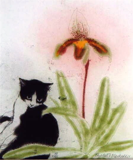 kittehkats:  Orchid and Cat etching and aquatint Elizabeth Blackadder