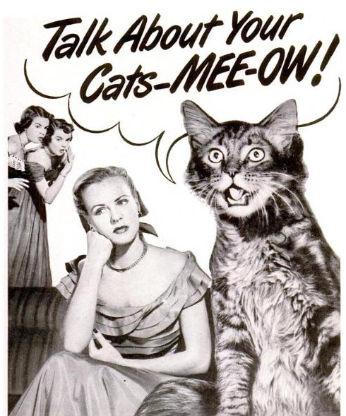 Talk About Your Cats-MEEE-OW!
