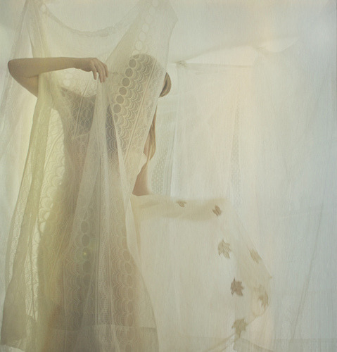 untitled by Lauren Treece on Flickr.