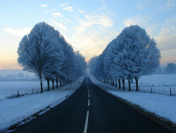 bmrgould:  Cold Road | By masimage