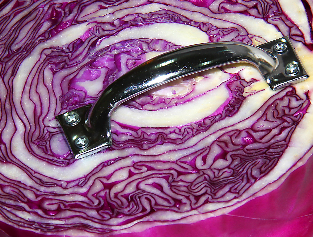 thejogging:  PURPLE CABBAGE with HANDLE (supportive of a wide array of opinions) Unique 1/1, 2012 •º• BUY IT ON ETSY NOW