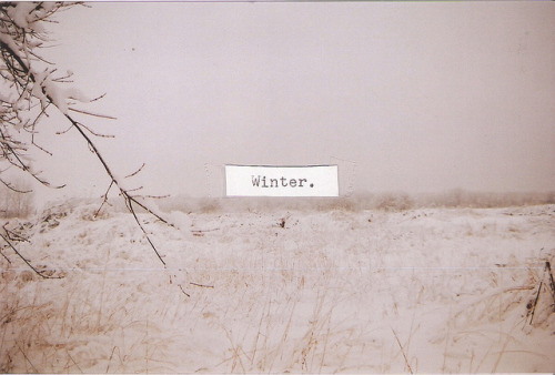 insipirir:  Winter. by deartomorrow on Flickr.