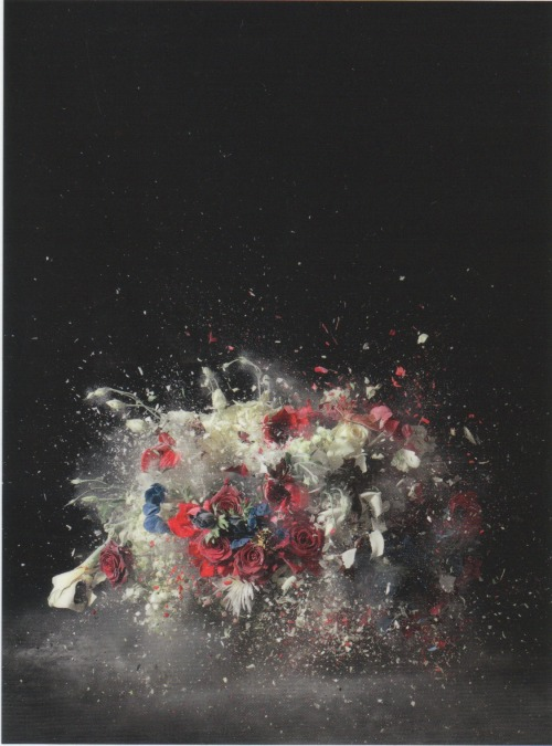 Ori Gersht Blow Up; Untitled 5 (2007) LightJet print mounted on aluminium (248 x 188 x 6 cm) (framed)© Courtesy of the artist and Mummery + Schnelle, London