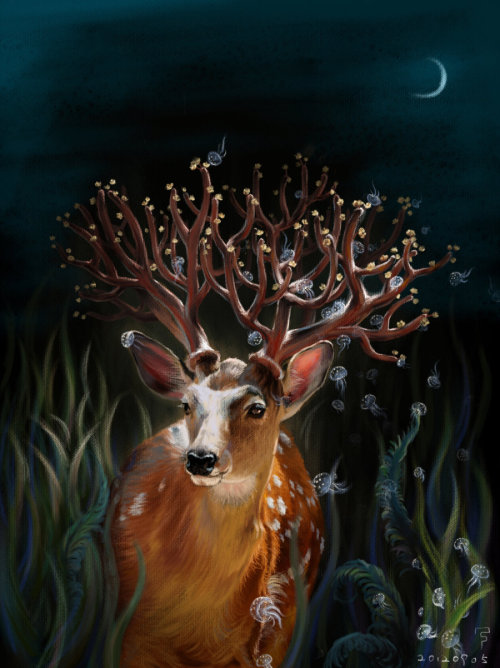 fer1972:  Deer by Kelededameng