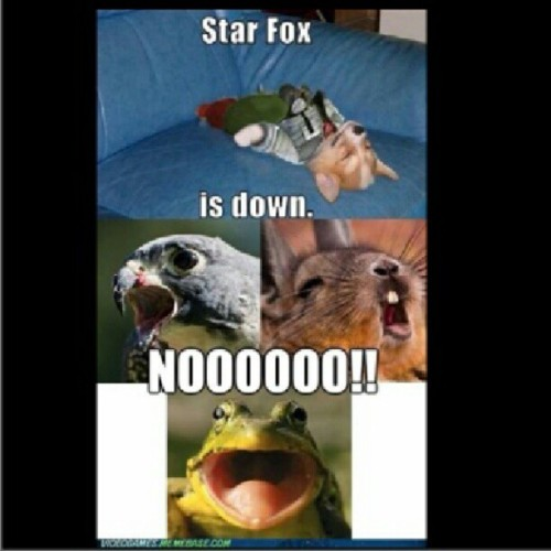 Ahhaha soo awesome. Need to play some Star Fox #nintendo #starfox #foxmccloud #falco #flippy #fuckwhatsthelastone #dooh #silly