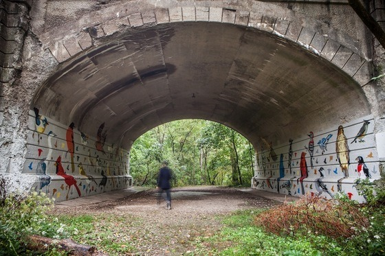 Birds of Ohio.  A once derelict bridge underpass has been rejuvenated by ALTernative, a community design group based in Columbus, Ohio. Earlier this year the team set out to transform an underpass caked with grafitti into a space that not only enhanced the landscape, but featured it. They painted over the scattered tags to create a new mural featuring 35 bird species native to Ohio.  It's been five months since the project ended and the team has just been honored with the 2012 Presidential Award award from the Columbus Landmarks Foundation. Even more exciting, a new grant has been established which will continue to ensure that the mural, and its surrounding park, are maintained for years to come.