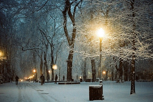 Snowy Night, Portland, Oregon photo via janet
