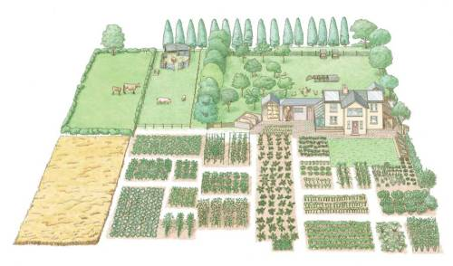 sustainable-sam:  motherearthnewsmag:  Start a 1-Acre, Self-Sufficient Homestead Expert advice on how to establish self-sufficient food production, including guidance on crop rotations, raising livestock and grazing management. By John Seymour Illustration by Dorling Kindersley  Perfect.   Hey Kel!