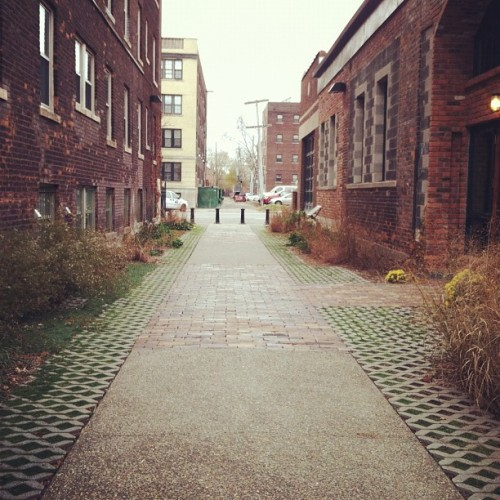 Ever heard of a green alleyway? #detroit #detroitisbeautiful  (at Green Garage)