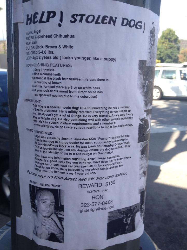 Found this on a lamppost in Eagle Rock yesterday. Epic.