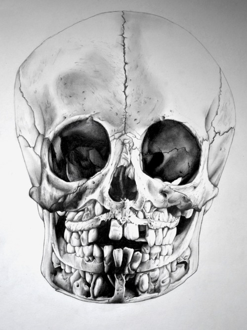 I love anything skulls.