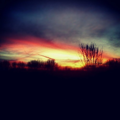 Another pic of the perty sunset(: #sunset #instagood #nature #creation #sky #clouds #pink #trees #yellow #orange #blue #pretty #twilight #night #fall