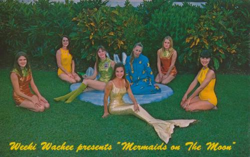 Weeki Wachee Springs, Florida  If you thought mermaids were just the lively imaginings of lonely sailors, think again — and come to Weeki Wachee Springs, the City of Live Mermaids, on the Gulf Coast of Florida. Located about an hour north of Tampa at the crossroads of U.S. 19 and State Road 50, Weeki Wachee is more than just a mark on a road map. Weeki Wachee is an enchanted spring — the only one of its kind in the world — and one of Florida's oldest and most unique roadside attractions. For almost 60 years, the fun, family oriented park has lured in visitors with beautiful mermaids who swim in the cool, clear spring waters. Weeki Wachee Springs is a magical entrance into a mysterious blue underwater world of mermaids, manatees, turtles and bubbles. Sitting in the Mermaid Theater, visitors feel like they are inside the flowing spring, and are transported back to simpler times, before super theme parks and super highways appeared. So come to Weeki Wachee Springs and see a splendid side of Florida lore, where dreams really do come true. —Weeki Wachee Springs Website  For more City of Live Mermaids images, follow the link here. * * * Jordan Smith is the guide to ephemeral America for The American Guide. He currently works for the University of Notre Dame during the day and scans at night. He lives in South Bend, Indiana and you can find him on Flickr, his blog, or one of several Tumblr sites.