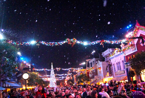 A Disneyland Winter Wonderland