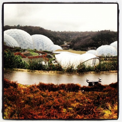 Alien landscapes (at The Eden Project)