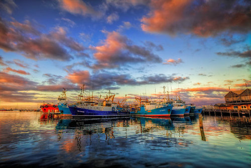 """Fremantle Boat Harbour"" by Paul Pichugin 