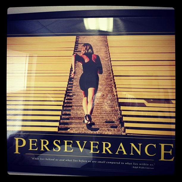"PERSEVERANCE ""What lies behind us & what lies before us are small compared to what lies within us"" - Ralph Waldo Emerson"