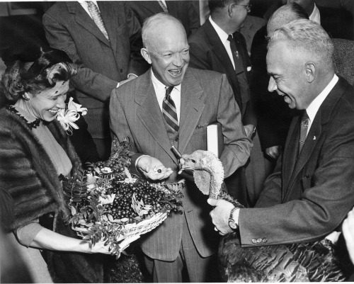 "Turkey Management Dwight D. Eisenhower receives a 43-pound turkey from Perry Browning of Winchester, Kentucky, president of the National Turkey Federation.  Ike holds the book, ""Turkey Management,"" which was also presented.  White House, November 14, 1954.  -from the Eisenhower Library"