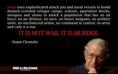 "socialismartnature:  Noam Chomsky: ""Israel is a criminal state"""