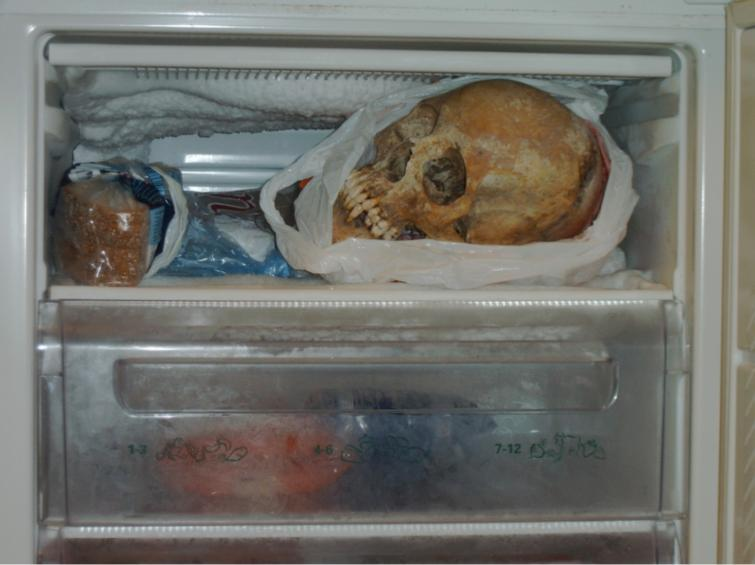 warrenellis:  (via Police photos: Woman charged for sex with human skeleton - The Local)  So, A Rose For Emily is real?