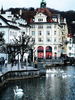 expensivelife:  Lucerne, Switzerland