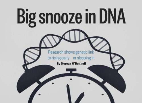 Are you a morning person? There's a gene for that. A team at Beth Israel Deaconess Medical Center in Boston have identified a particular gene that predicts whether you wake early or sleep in and — more dramatically — what time of day you're mostly likely to die.