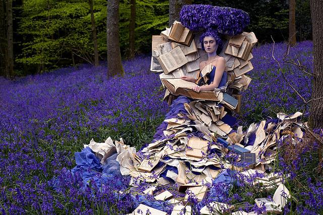 Wonderland : The Storyteller by Kirsty Mitchell.
