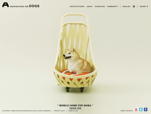 http://www.architecturefordogs.com/
