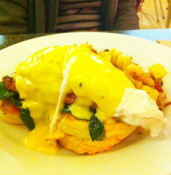 Grilled chorizo and sauteed spinach eggs benedict - two poached eggs on a buttermilk biscuit, basil hollandaise & hashbrowns.