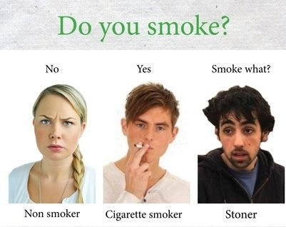 "hahahhahahah "" smoke what "" exaaat"