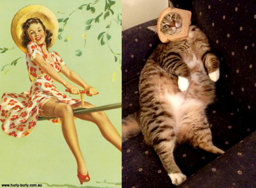 "catsthatlooklikepinupgirls:  I have just had an email from the owner of the cat in the photo below that has broken my little heart:  ""This is my cat, Butters (Buttercup Pygmalion Turner).  Butters is dying, and the vet isn't sure why.  The rest of her life will likely be measured in days. Thank you for reminding us how happy she makes us and letting her bring a smile to others.""  Please send Butters all of your loves. :("