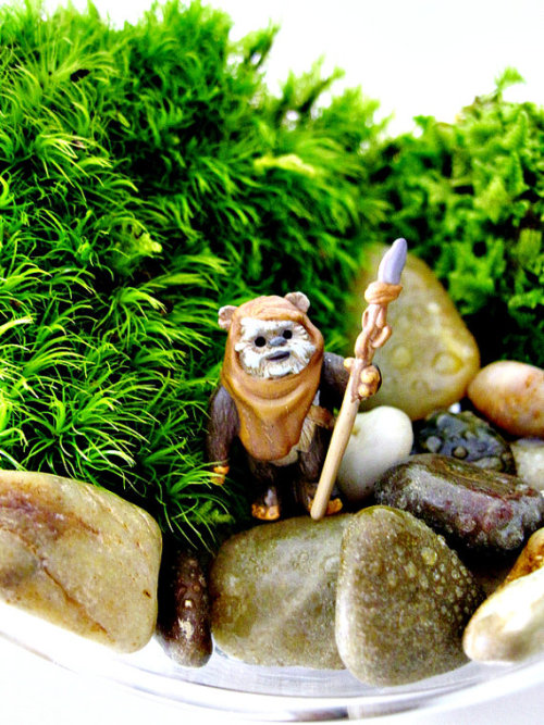 GIMME THIS F•CKIN TERRARIUM!! Hate on Ewok haters…hate on. (racists)  By: Doodle Birdie and only 40 bux, your choice of 3 Ewoks   ETSY