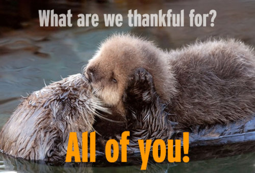 We have a lot to be thankful for today, including your great support for the Aquarium and our oceans. What are YOU thankful for? Best to you and yours on this special day!