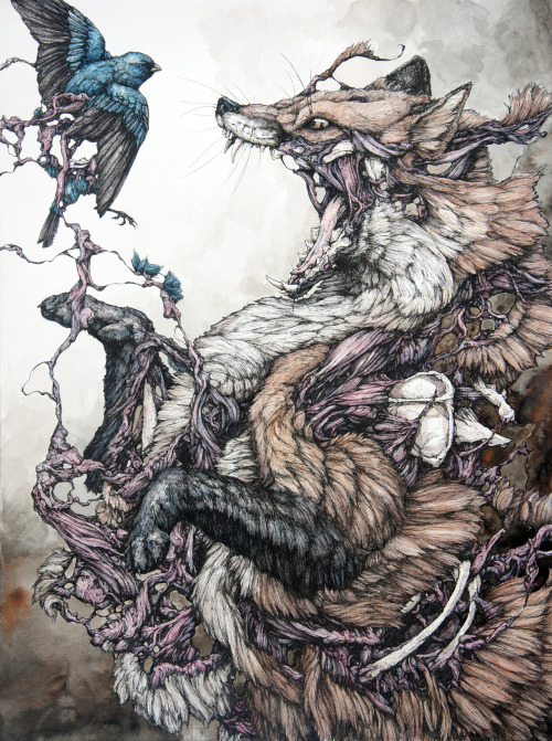 red-lipstick:  Lauren Marx - Red Fox and Indigo Bunting                      Drawings http://www.juxtapoz.com/Gallery/laurenmarx/laurenmarx12-45161#laurenmarx5-45157