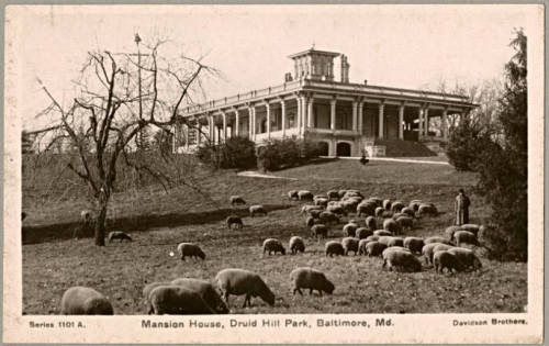 Mansion HouseDruid Hill Park, Baltimore, Marylandca. 1910-1920Published by Davidson Bros. Real Photographic Series, London & New YorkPostcardPostcard CollectionMaryland Historical Society[Postcard]