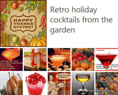 Retro Cocktails for Thanksgiving.. Check out these Cocktail Recipes from The Garden for Thanksgiving Holiday.  Hic