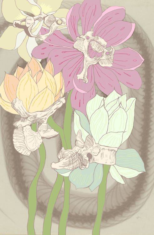 Water lilies and Vertebrae. By Me.