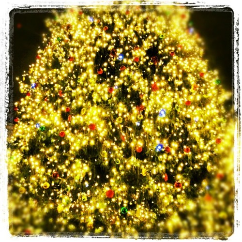 #Shiny #Colorful #Christmas #Tree :-) (at Christmas Tree Lighting At Fanieul Hall)