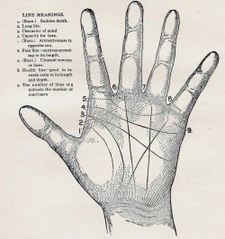"reptarsmash:  dopeitsoli:  fuckyeahpnwgirl:  nevver:  Palmistry   I have no lines at 9. I knew it.  I 100% have the ""sudden death"" line. Rad.  2,3,&4 100%"